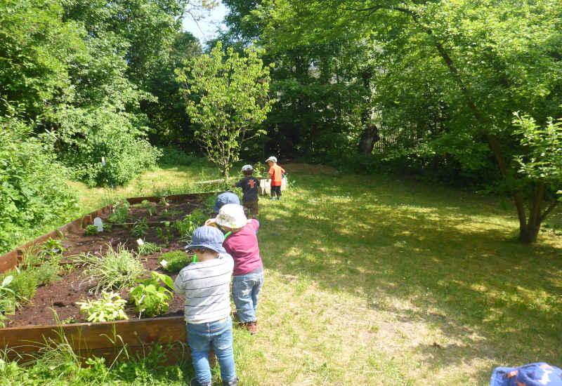 kinder beim kräutergarten
