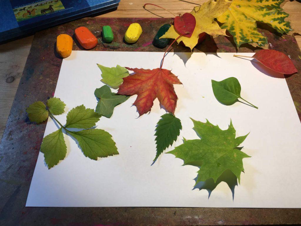 Bunte Blätter auf Papier