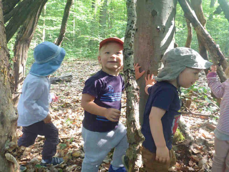 drei spielgruppen kinder laufen zwischen baumen.